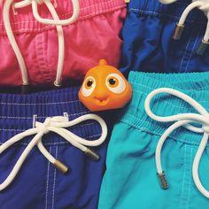 BAYAHIBE Swimwear (@Bayahibe_Store) | Twitter  Hey Guys, I found Nemo !! #BayahibeSwimwear #Swimsuits #Maillotdebain
