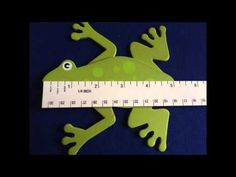 Measuring Length to the Nearest Inch  Half Inch - Standard System - Almost a Second Grader - www.almostasecondgrader.com