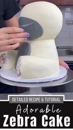 Homemade Buttercream Frosting, Frosting Recipes, Cake Recipes, Zebra Birthday Cakes, Unique Birthday Cakes, Cake Decorating Videos, Cake Decorating Techniques, Chocolate And Vanilla Cake, Liquid Food Coloring