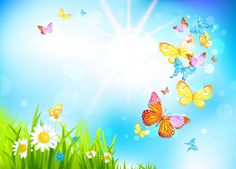 mariposas de colores wallpaper - Buscar con Google