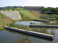 Stormwater processing at a constructed wetland, Renaissance Park, North Chattanooga Landscape And Urbanism, Landscape Architecture Design, Urban Landscape, Landscape Architects, Wetland Park, Water Management, Urban Park, Parking Design, Urban Planning