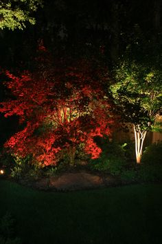 residential exterior lighting pictures - Yahoo! Search Results