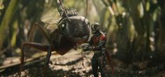 Ant Man And The Wasp Fan Made Trailer : Here is a Cool Fan Made Trailer Made By a Marvel Movie Fan For Fun And Entertainment.Ant Man and Is an Upconin.