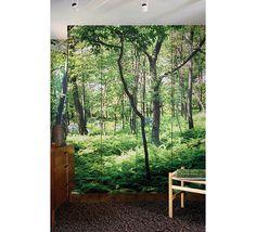 Forest Mural Wallpaper