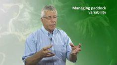 Managing paddock variability Polo Shirt, Youtube, Mens Tops, Polos, Polo Shirts, Polo, Youtubers, Youtube Movies