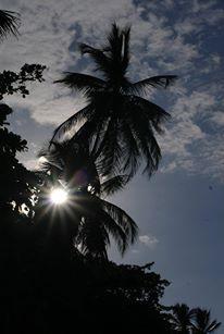 #costarica #puravida #carribean #puertoviejo Costa Rica, Pura Vida, Destinations, Viajes