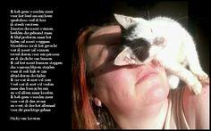 Mijn lieve Eye die helaas moest inslapen Animals, Animais, Animales, Animaux, Animal, Dieren