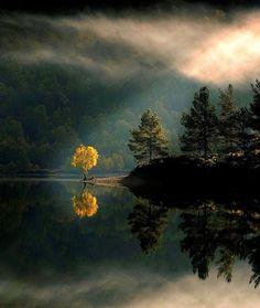 Glen Affric, Scotland photo via maricela