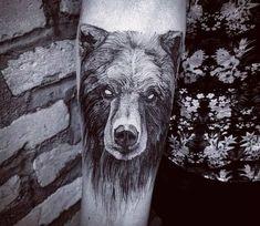 Black Bear tattoo by Felipe Kross- World Tattoo Gallery Leg Tattoos, Body Art Tattoos, Sleeve Tattoos, Tatoos, Trendy Tattoos, Tattoos For Guys, Cool Tattoos, Bruder Tattoo, Grizzly Bear Tattoos