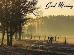 Download Images For Good Morning, Wallpapers, Pictures, Photos, Wishes, SMS, Cards, Quotes, Greetings, for Facebook, Pinterest, Tumblr & Whatsapp
