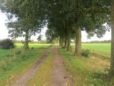 2014-09-21 Stamdijk, Borkeld