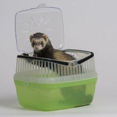 cage transport #furets #monfufu.com https://www.monfufu.com/laisse-harnais-pour-furets/82-cage-transport-pour-furet.html