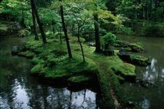 Moss Garden Keishun In Temple Kyoto Japan Asia: Giga World: Garden Moss Saiho-ji. Moss Garden, Garden Paths, Moss Temple, Temple Gardens, Japan Garden, Path Ideas, Forest Path, Nature Aesthetic, Spiritual Path