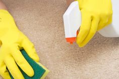 3 Wonderful Tricks: Carpet Cleaning With Ammonia Stain Removers carpet cleaning recipe simple.Dry Carpet Cleaning Tips easy carpet cleaning products.Dry Carpet Cleaning Tips. Cleaning Carpet Stains, Carpet Cleaning Recipes, Carpet Cleaning Business, Carpet Cleaning Machines, Diy Carpet Cleaner, Carpet Cleaning Company, Professional Carpet Cleaning, Carpet Cleaners, Diy Cleaning Products