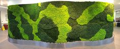 Beautiful New Moss Wall for City of London Client ! Moss Art, Living Walls, Home Board, 3d Max, Small Plants, Green Walls, Flower Decorations, Greenery, Gardens