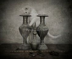 'Curiosity Killed the Cat but Satisfaction Brought it Back' by Kim-maree Clark Framed Prints, Canvas Prints, Art Prints, Curiosity Killed The Cat, Art Boards, Vase, Texture, Poster, Painting