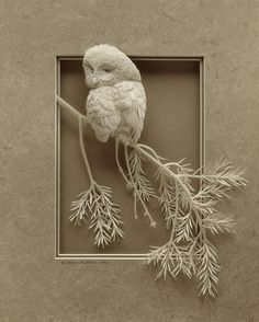 Artisit Calvin Nicholls makes amazing sculptures out of paper. Wow.