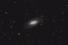 NGC2903 Barred Spiral Galaxy in Leo [OC][2096x1408]