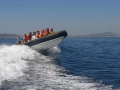 Garden Route Power Boating - Garden Route Boating  Sailing Adventures offers a wide range of water-based adventure activities, accredited training courses and hosting of boating events from Knysna and along the Garden Route RIB...