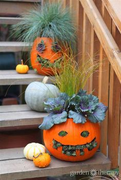 Jack o Planterns - Take pumpkin decorating to a new level with this pumpkin carving craft. A great alternative to traditional planters in your garden. Jack-o-Planterns!