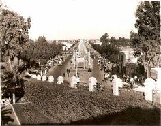 صورة جميلة جدا لشارع الهرم بالجيزة عام 1950 تقريبا