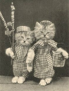 Vintage Dressed Cat Couple......I HAD A BOOK WITH THESE DRESSED-UP KITTIES WHEN I WAS A LITTLE GIRL.......THINK IT WAS MY FAVORITE BOOK.............ccp