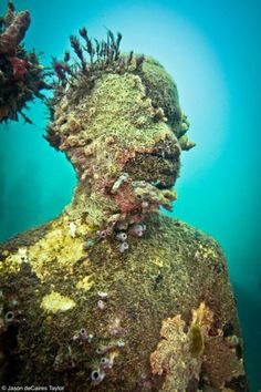 Jason deCaires Taylor - vicissitudes  underwater sculpture