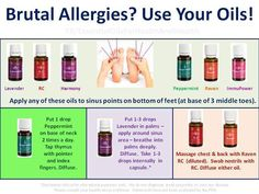 Young Living Essential Oils for Allergies.