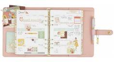 Planner Supplies, Scrapbook Supplies, Scrapbook Paper, Carpe Diem Planner, Reset Girl, Filing Papers, Interior Windows, Calendar Pages, Paper Organization