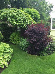 Most Creative Gardening Design Ideas - New ideas Best Plants For Shade, Shade Plants, Garden Design Plans, Flower Garden Design, Big Garden, Easy Garden, Garden Ideas, Gemüseanbau In Kübeln, Succulents In Containers