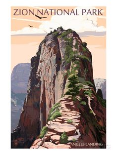 Zion National Park - Angels Landing and Condors Prints by Lantern Press at AllPosters.com