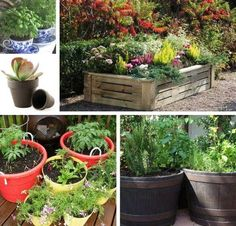 Container Gardening Tips For Homesteaders | Homesteading Hacks Every Homesteader Should Know