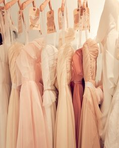 blush, coral, peach, apricot, ivory.