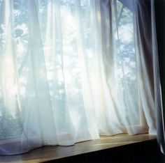 Rinko Kawauchi Gives the simplest of subjects a subtle beauty through her photography.