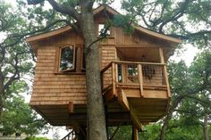 tree house masters | Treehouses are not just for kids!