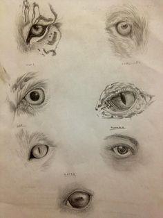 Animal eyes by ~GlenysakaZhenzi on deviantART