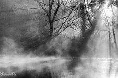 le brouillard levant by Photographie Vally on 500px
