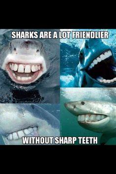 För det är är hilarious!