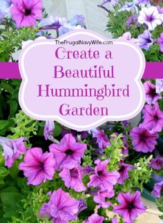 If you love to watch hummingbirds, you'll love these tips for how to create a hummingbird garden via The Frugal Navy Wife Hummingbird Flowers, Hummingbird Garden, Hummingbird Nests, How To Attract Hummingbirds, How To Attract Birds, Attracting Hummingbirds, Flowers That Attract Hummingbirds, Outdoor Plants, Garden Plants
