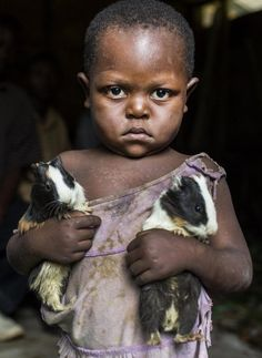 A girl carries two guinea pigs she was given during a distribution of the animals to her community as part of a food security program of Action Against Hunger International (ACF) in Karete, Democratic Republic of Congo, on February More than 500 Kids Around The World, People Around The World, Precious Children, Beautiful Children, African Children, Recent Events, Jolie Photo, Baby Kind, Animals For Kids
