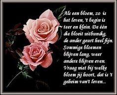 Als een bloem,  zo is het leven, 't begin is teer en klein. De één bloeit uitbundig de ander geurt heel fijn. Sommige bloemen blijven lang, weer andere blijven even. Vraag niet bij welke bloem jij hoort,  dat is 't geheim van 't leven...