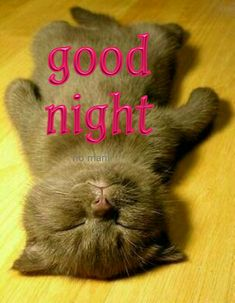 good night no mani Good Night Funny, Good Night Prayer, Good Night Blessings, Good Night Wishes, Good Night Moon, Good Morning Good Night, Good Night Sleep, Sweet Good Night Messages, Good Night Sweet Dreams