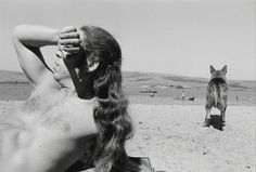 Henry Wessel, California, 1973, Robert Mann Gallery