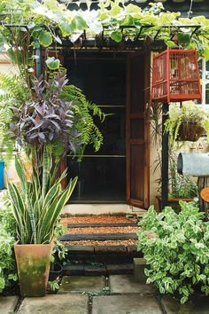 Favorites Tropical Backyard Landscaping, Tropical Garden, Outdoor Plants, Outdoor Gardens, Vertical Garden Design, Garden Cafe, Interior Plants, Green Landscape, Planting Flowers