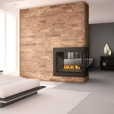 Napoleon BHD4 Ascent Peninsula Direct Vent Gas Fireplace