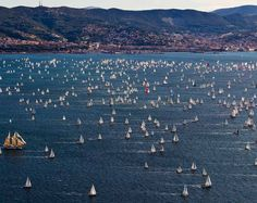 Panoramic view: the Gulf of Trieste during Barcolana Regatta