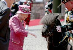 Queen Elizabeth II meets Shetland Pony Cruachan IV, the mascot of the Royal Regiment of Scotland, during a visit to Stirling Castle, as she marked 70 years since being appointed Colonel-in-Chief of the Argyll and Sutherland Highlanders. via @AOL_Lifestyle Read more: https://www.aol.com/article/lifestyle/2017/07/06/queen-pony-flowers-scotland/23019720/?a_dgi=aolshare_pinterest#fullscreen