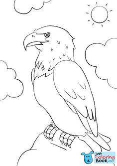 Cartoon Bald Eagle Coloring Page Free Printable Coloring Pages With Regard To Cartoon Bald Eagle Coloring Pages Printable For Free Coloring Book App, Owl Coloring Pages, Free Coloring Sheets, Printable Adult Coloring Pages, Mandala Coloring Pages, Flamingo Coloring Page, Coloring Pictures For Kids, Bird Drawings, Bald Eagle