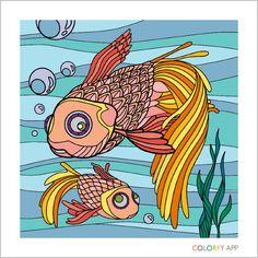 Fish - Colorfy app