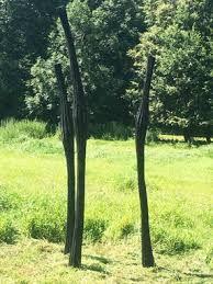 Bildergebnis für skulpturen aus holz für den garten Sculpture Art, Sculptures, Plants, Lawn And Garden, Plant, Planets, Sculpture